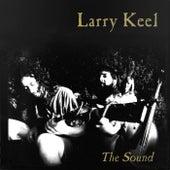 The Sound von Larry Keel