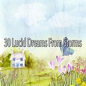 30 Lucid Dreams from Storms by Rain Sounds and White Noise