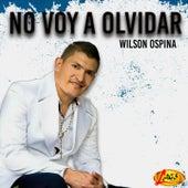 No Voy a Olvidar by Wilson Ospina
