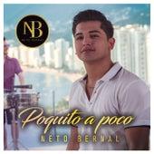Poquito A Poco by Neto Bernal