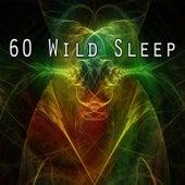 60 Wild Sleep de Ocean Sounds Collection (1)