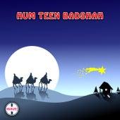 Hum Teen Badshah de Various Artists