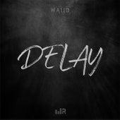 Delay de Walid