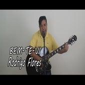 Bem-Te-Vi de Rodrigo Flores