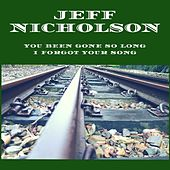 You Been Gone so Long I Forgot Your Song by Jeff Nicholson
