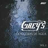 Dos Gotas De Agua, Vol. 2 von Los Grey's
