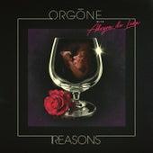 Reasons by Orgone