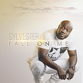 Fall on Me (Live) by Sylvester