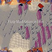 Flute Meditation in F#m by Jake Fleming