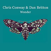 Wonder by Chris Conway