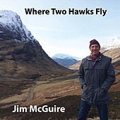 Where Two Hawks Fly by Jim McGuire