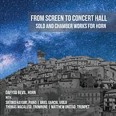 From Screen to Concert Hall: Solo and Chamber Works for Horn by Dafydd Bevil