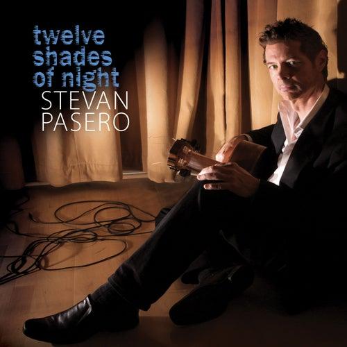 Twelve Shades of Night by Stevan Pasero