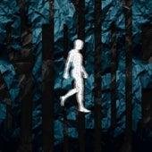 Free Me by Rony Seikaly