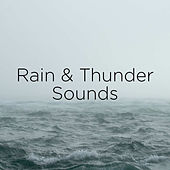 Rain & Thunder Sounds de Thunderstorm Sound Bank