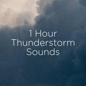 1 Hour Thunderstorm Sounds de Thunderstorm Sound Bank