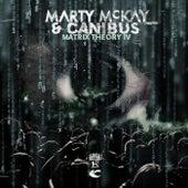 Matrix Theory IV de Marty McKay