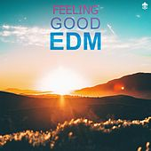 Feeling Good EDM by Various Artists
