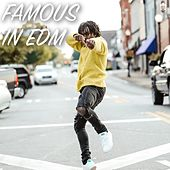 Famous in EDM de Various Artists