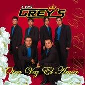 Otra Vez El Amor de Los Grey's