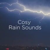Cosy Rain Sounds de Thunderstorm Sound Bank