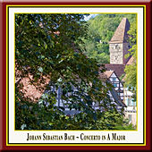 J.S.BACH: Concerto No.4 in A Major for Oboe D'Amore, Strings and Basso Continuo BWV 1055/R by Wolfgang Bauer Consort