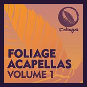 Foliage Acapellas, Vol. 1 de The Layabouts, Nathan Haines, Diephuis, Halo, David Harness, Taola, Daz-I-Kue, SanXero, Pulse, David Federmann