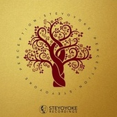 Steyoyoke Perception, Vol. 3 de Various Artists