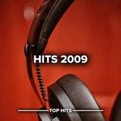 Hits  2009 von Various Artists