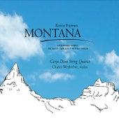 Montana by Carpe Diem String Quartet