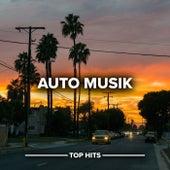 Auto Musik von Various Artists