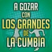 A Gozar Con Los Grandes De La Cumbia de Various Artists