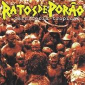 Carniceria Tropical by Ratos De Porão