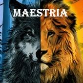 Maestria by Mr.Duart