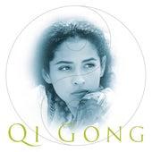 Qi Gong von Various Artists