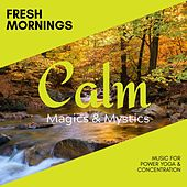 Fresh Mornings - Music for Power Yoga & Concentration de Various Artists