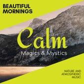 Beautiful Mornings - Nature and Atmospheric Music de Various Artists