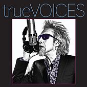 true VOICES von Various Artists