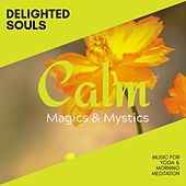 Delighted Souls - Music for Yoga & Morning Meditation de Various Artists