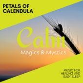 Petals of Calendula - Music for Healing and Easy Sleep de Various Artists