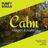 Purify Souls - Relaxing Music for Healing & Mental Wellness de Various Artists