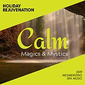 Holiday Rejuvenation - 2019 Mesmerizing Spa music de Various Artists