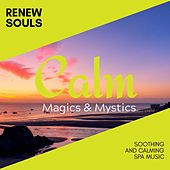 Renew Souls - Soothing and Calming Spa Music de Various Artists