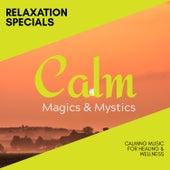 Relaxation Specials - Calming Music for Healing & Wellness de Various Artists