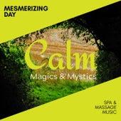 Mesmerizing Day - Spa & Massage Music de Various Artists