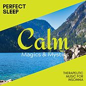 Perfect Sleep - Therapeutic Music for Insomnia de Various Artists