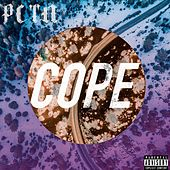 Cope (E.P.) de Perception
