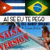 Ai Se Eu Te Pego (salsa version) di Andy Bruno