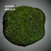 Sister Luck by Austen Brauker