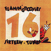 Sixteen Tunes by The Flamin' Groovies